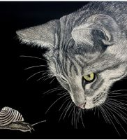 Cat and snail